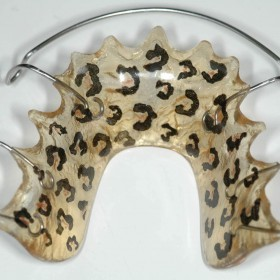 MANDIBULAR ORTHODONTICS